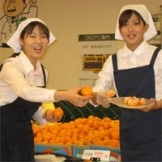 葛飾区,金町(東京都)駅の試飲・試食販売の短期アルバイト【日払い】の写真