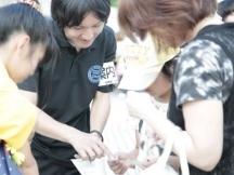 大阪市,大阪城公園駅のイベント運営スタッフの短期アルバイト【日払い】の写真