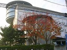 江東区の発送・仕分け・梱包の短期アルバイト【主婦・主夫歓迎】の写真